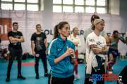 WAKO K-1 WORLD Grand Prix